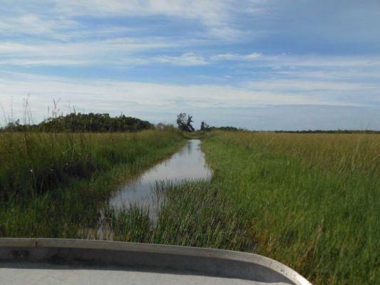 De Everglades – reisverhaal