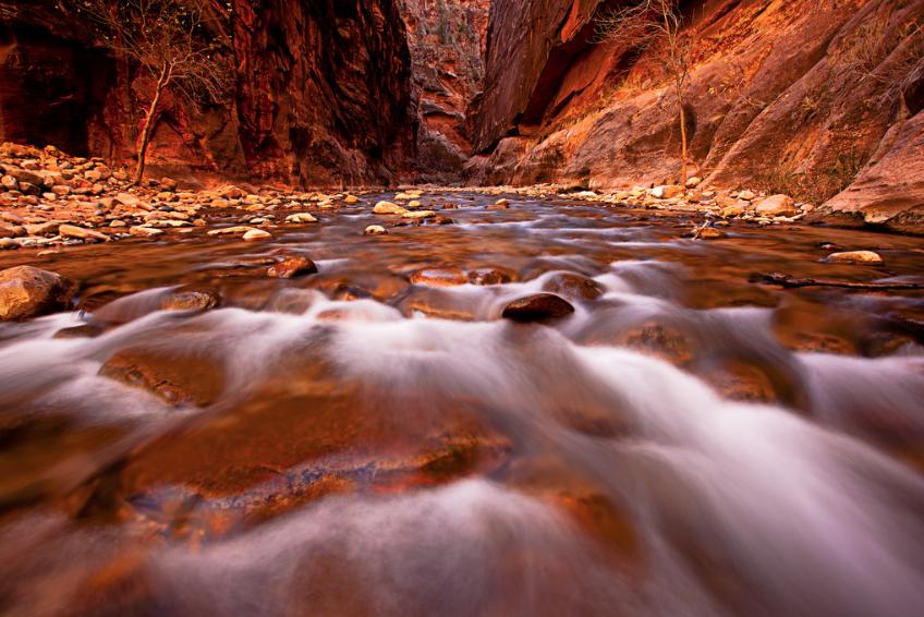 Het wordt te druk in Zion National Park – Actie is vereist!