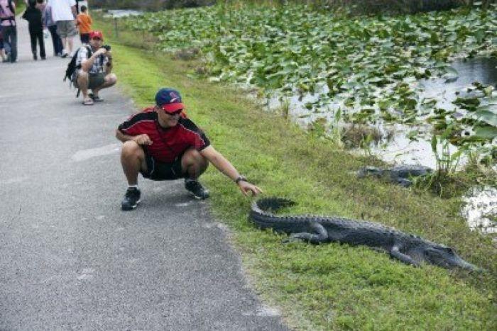 Shark valley – Florida