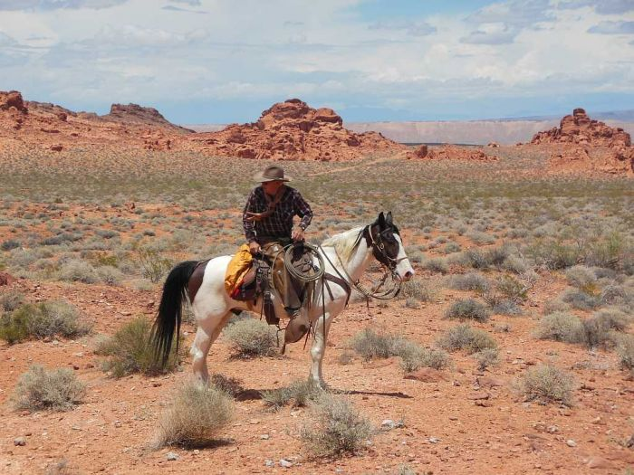 Cowboy in Valley of Fire